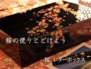 レターボックス桜